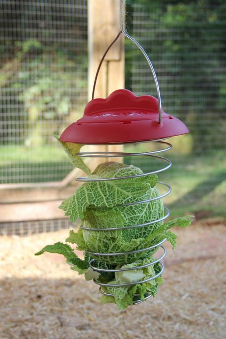 Feathers and Beaky Expandable Veg Holder Product Review