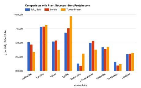 Turkey, Soy and Lentil Protein Comparison