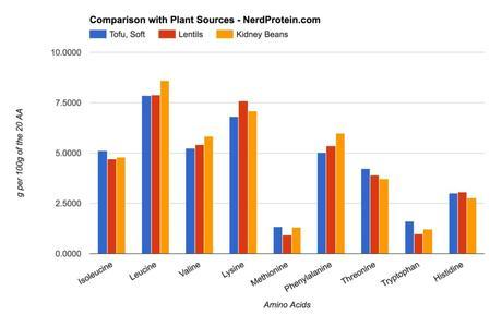Kidney Bean Lentil and Soy Protein Comparison