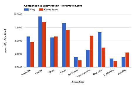 Kidney Bean and Whey Protein Comparison