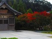 Centuries History Dazaifu