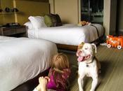 Manners Matter: Etiquette Pet-Friendly Hotels