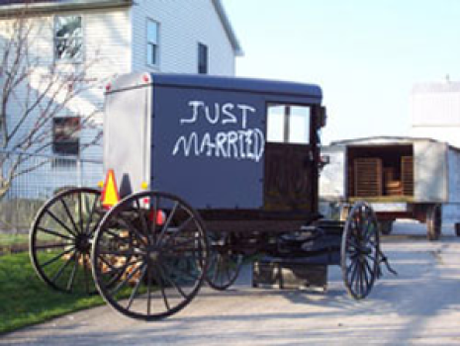 Amish Weddings by Leslie Gould