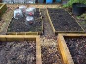 Plans Raised Beds