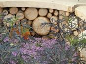 Small Gardens Hampton Court Flower Show