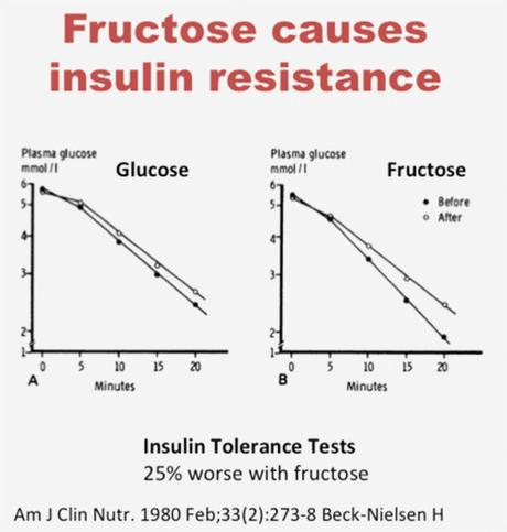Fructose and Fatty Liver – Why Sugar is a Toxin