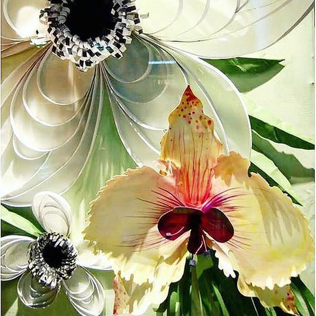 Anthropolgie Window Paper Flowers  - Highland Park, Illinois
