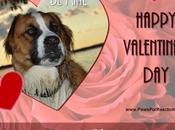 #BeMine Hazel Keira Wishing #HappyValentinesDay