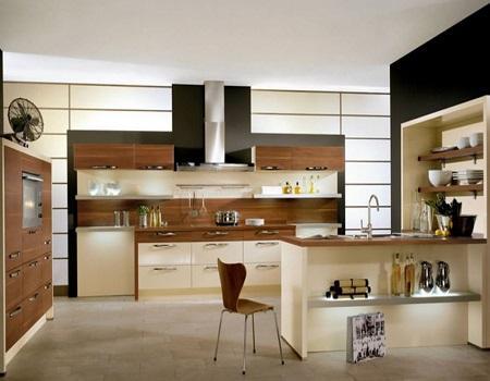 Elegant Contemporary Kitchen Ideas