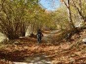 Mountain Biking Fall Foliage Abruzzo