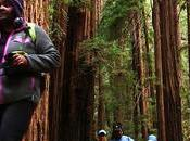 Video: U.S. National Parks Attempting Lure More Minority Visitors