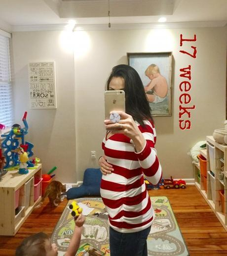 Pregnancy Journal: 17 weeks pregnant with Baby #2