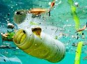 Invisible Plastic Particles from Textiles Tyres Major Source Ocean Pollution IUCN Study