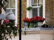 Ways Secure Your Home Windows
