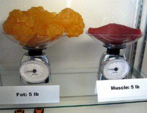Weight loss and Bodybuilding