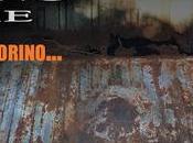 Rusty Torino Time!