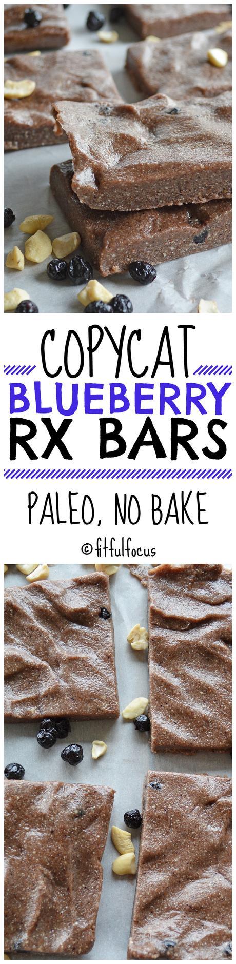 Copycat Blueberry RX Bars (paleo, no bake)