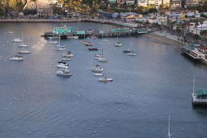 Two Lovely Days, Where? Gorgeous Catalina Island, California