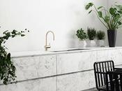 Minimalistic Kitchen with Green Plants