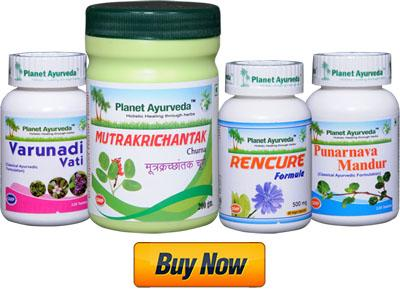 Herbal Treatment For Kidney Failure