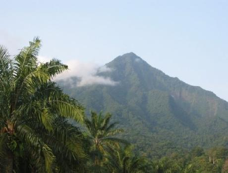 Cameroon Volcano, Cameroon