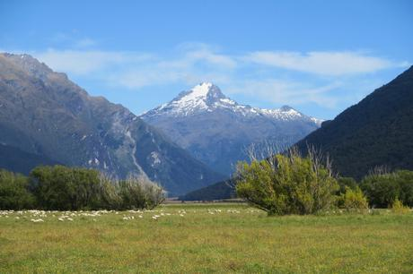 Rethinking New Zealand: Cramped and Crowded and Not For Cycle Touring