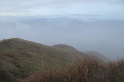 Reaching the Summit: Mt. Pulag Chronicles