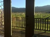 Room With View: Napa Valley (And Unexpected Event)
