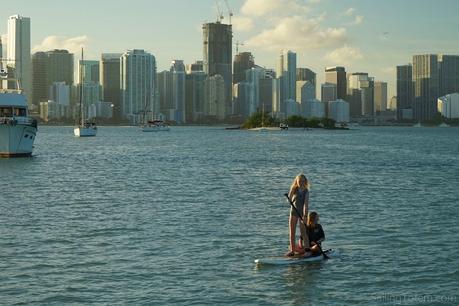 0 Miami skyline