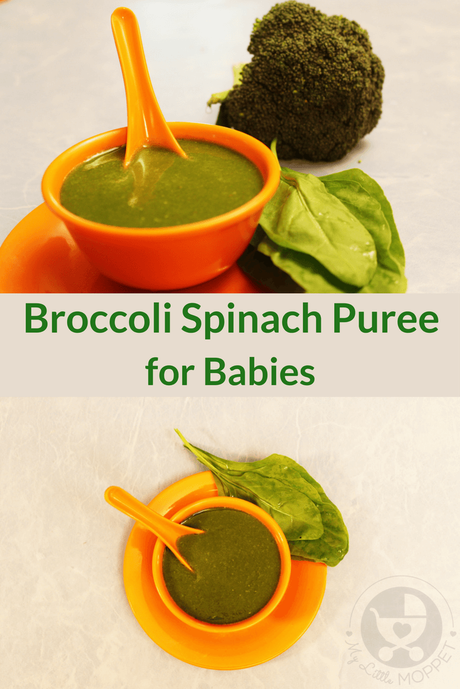 Avoid power struggles over vegetables later by getting your baby used to its taste right from the start! Try out this puree that combines two super foods in one - Broccoli Spinach Puree.