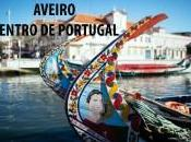 Aveiro Centro Portugal Video