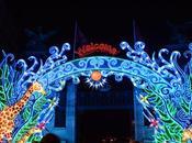 Visit China Light Antwerp