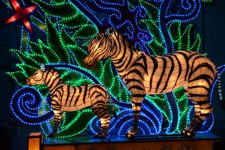 A Visit to China Light Zoo Antwerp