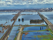 Floodplain Restoration Defenders Wildlife Blog