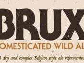 Brux Domesticated Wild Russian River Sierra Nevada Brewing Collaboration) Bottle 3/12/2017