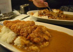 Katsu Curry, JR Japan Rail Pass Travel in Winter February Snow