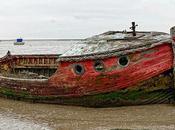 Abandoning Boat Kills Environment