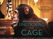 Unlocking Cage