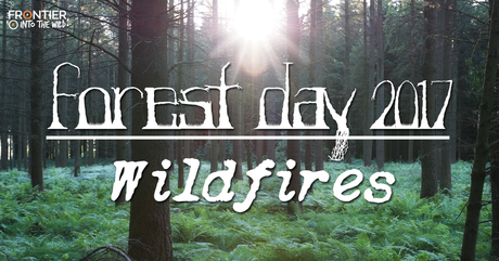 Forest Day 2017: Wildfires