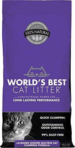 best non tracking cat litter reviews mar2017 buyeru0027s guide - Cat Litter Reviews