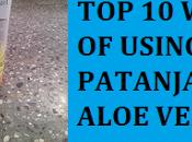 Ways Patanjali Aloe Vera