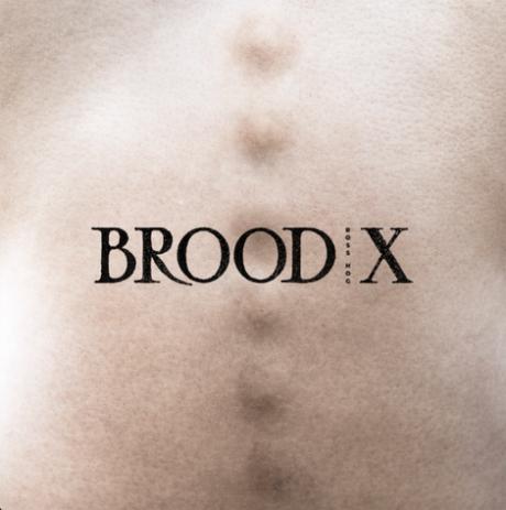brood-x