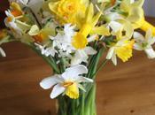 Vase Monday Daffodils