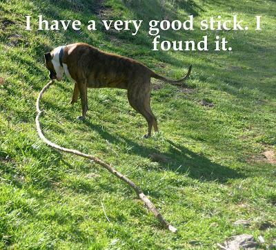 A Very Good Stick