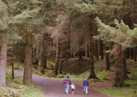 Queen Elizabeth Forest Park, Scotland
