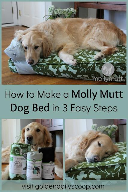 How to make a molly mutt bed in 3 easy steps