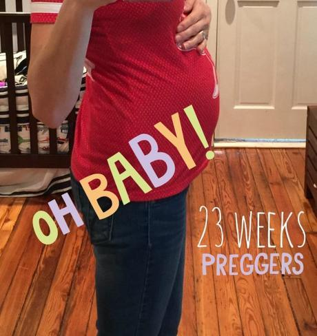 Pregnancy Journal: 23 weeks pregnant with baby #2