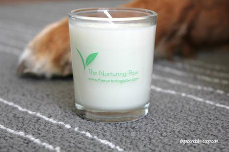 the nurturing paw lavender soy candle