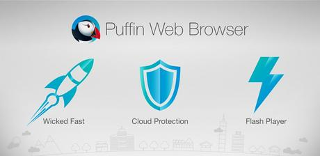 Puffin Browser Pro v6.0.9.15863 APK