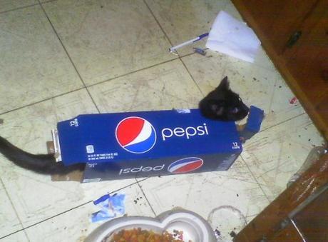 Pepsi Cat Costume